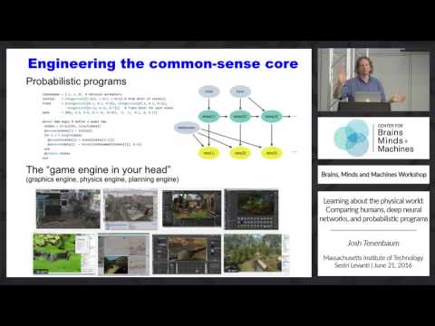 Learning about the physical world: Comparing humans, deep neural networks, and...