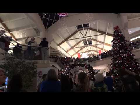 """Boise Towne Square Mall Christmas Carol """"Flash Mob"""""""