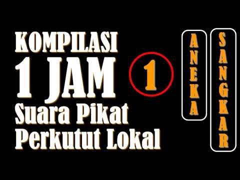 1 JAM - Kompilasi Suara Pikat Perkutut Lokal (Edisi 1)