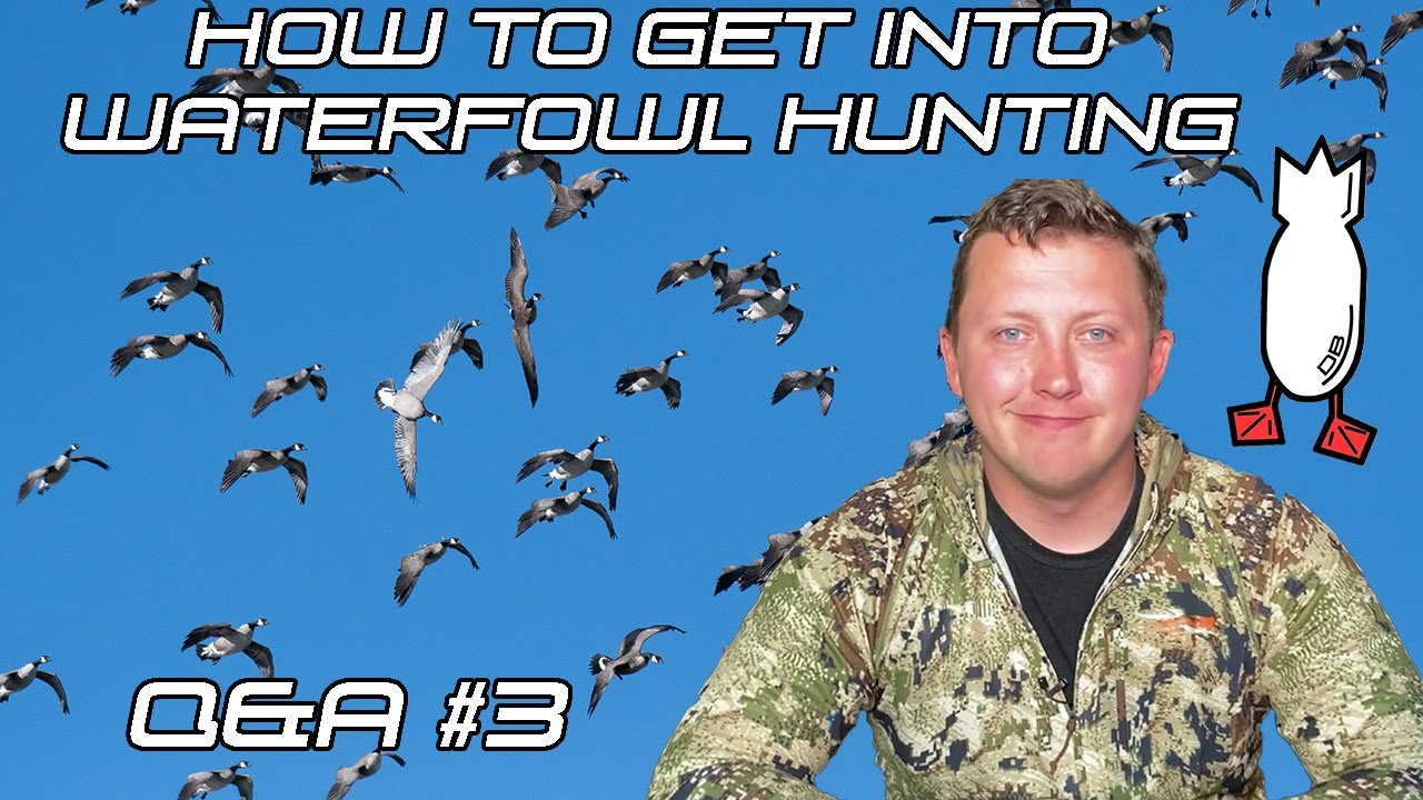 HOW TO GET INTO WATERFOWL HUNTING? Field Facts With Forrest