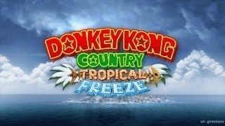 ドンキーコングトロピカルフリーズ(Donkey Kong Country: Tropical Fre...