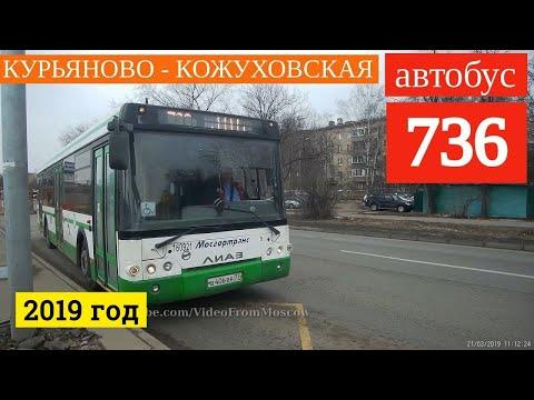 Автобус 736 Курьяново - метро Кожуховская // 21 марта 2019