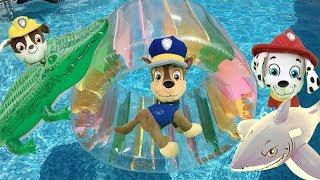 Paw patrol bebes español:Tiburon, cocodrilo y juegos con juguetes de piscina.Videos patrulla canina