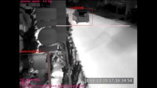 YOLO-V3 & OpticalFlow on Jetson TX2 thumbnail
