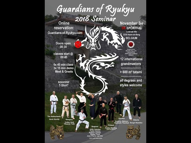 A view of Guardians of Ryukyu 2018 Seminar by GM Walter Toch