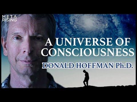 A Universe of Consciousness   Donald Hoffman Ph.D.