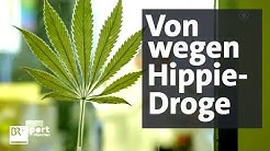 Gefährliches Cannabis: THC-Gehalt extrem gesteigert   report München   BR24