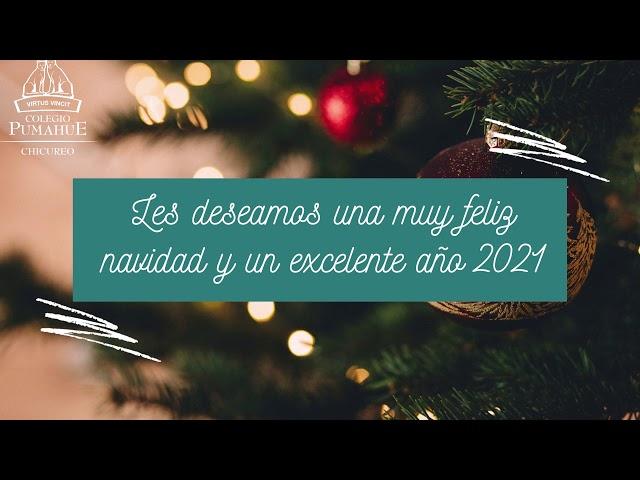 Saludo Fin de Año 2020 Pumahue Chicureo