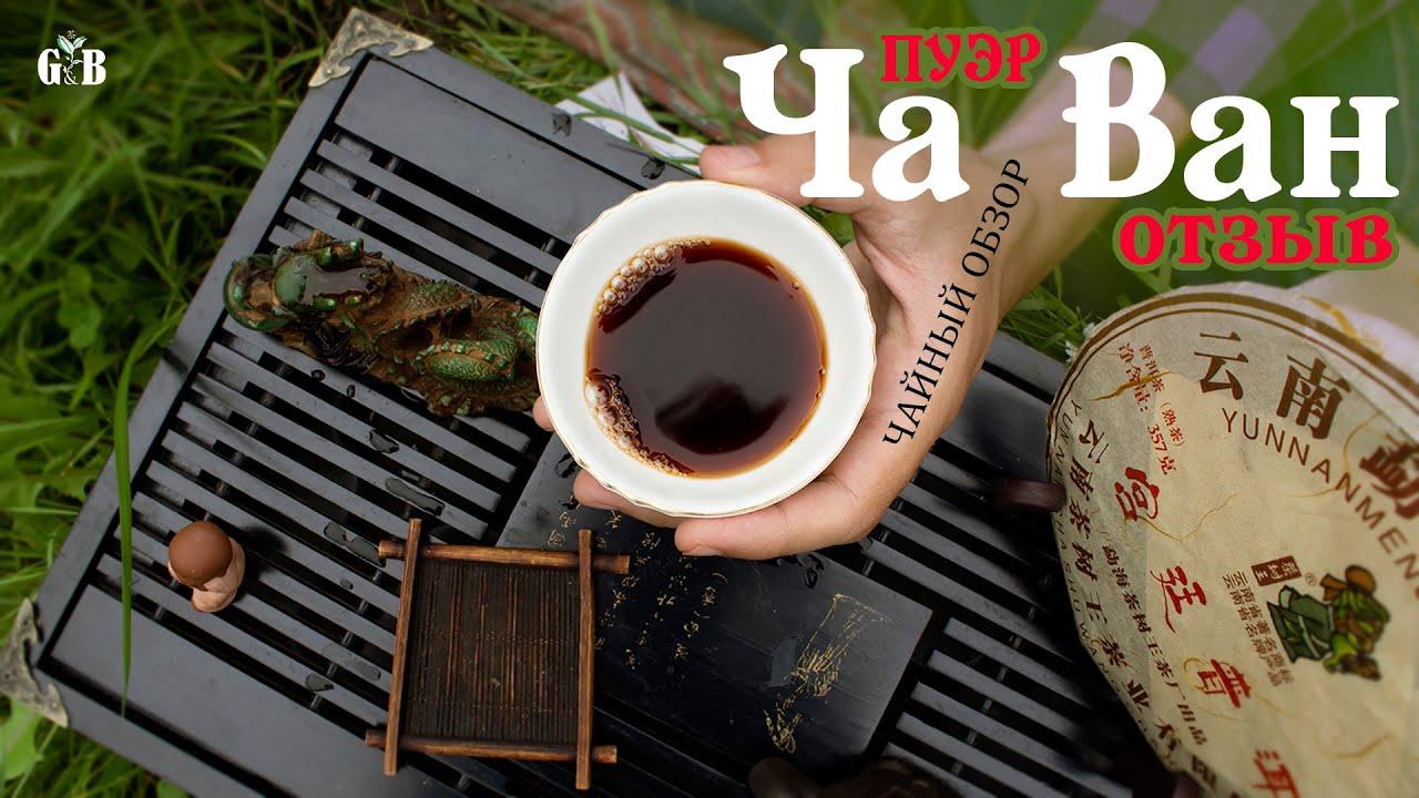 Чайный обзор Шу пуэр Ча Ван эффект - мой отзыв