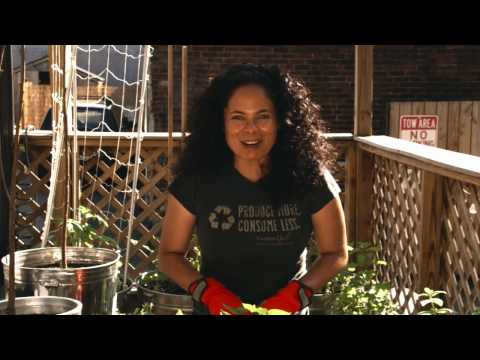 Container Gardening How To Plant Blackberries