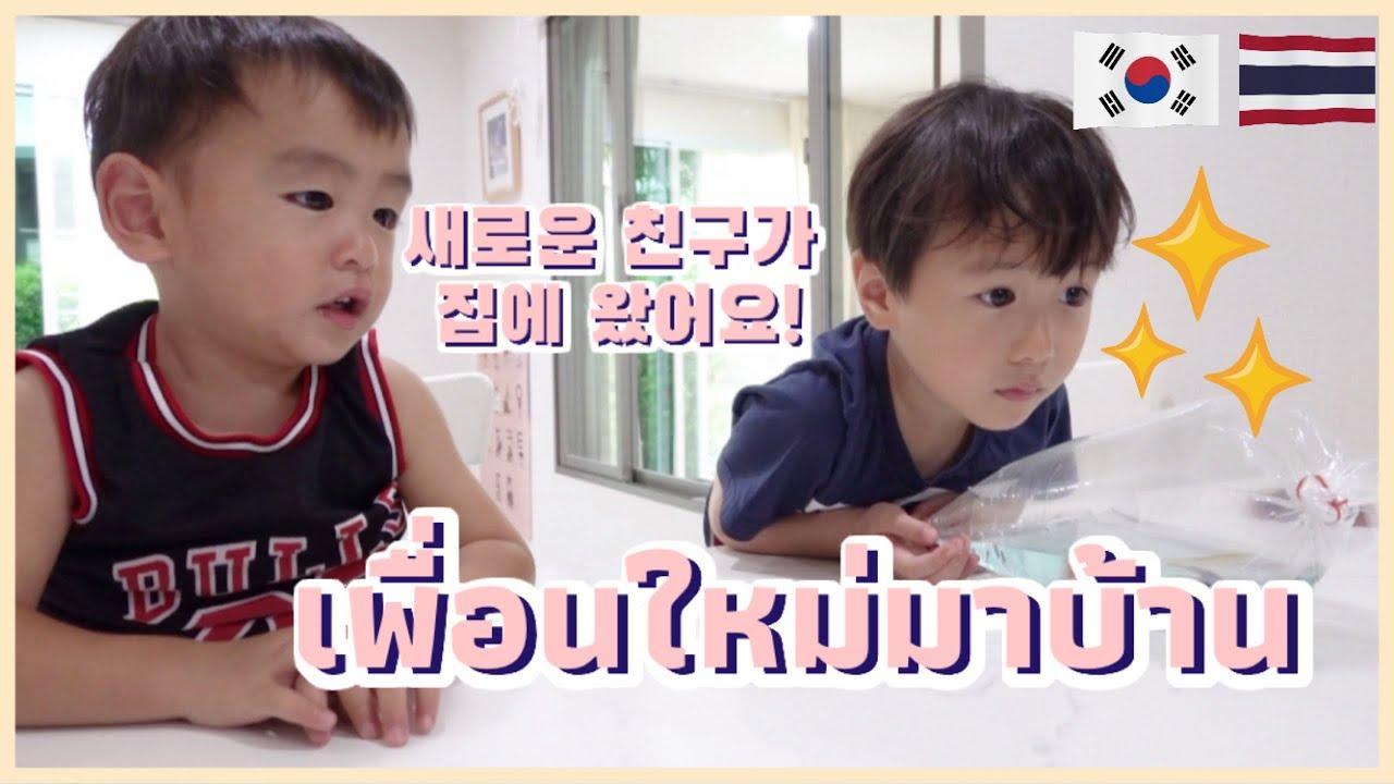 🇰🇷🇹🇭 เมื่อลูกๆอยากเลี้ยงปลา!! #ลูกครึ่งไทยเกาหลี   물고기를 키우고싶은 아이들.... #한태앙ㅣ