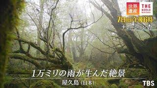 日曜ごご6時『世界遺産』 6月7日放送予告 ☆番組公式ホームページ http://www.tbs.co.jp/heritage/ ☆番組公式instagram http://www.instagram.com/tbs_heritage ...