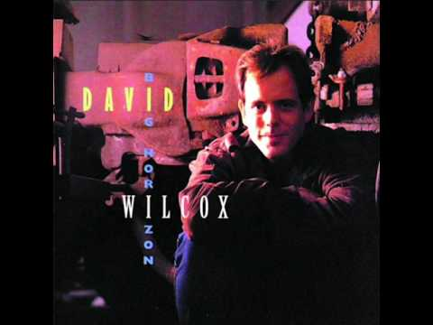 'It's The Same Old Song' by David Wilcox