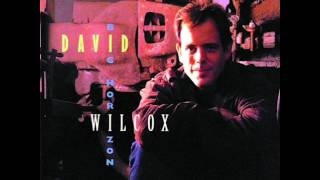 Watch David Wilcox Its The Same Old Song video