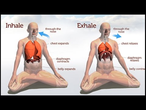 Awareness Breathing: How to focus on your breath!