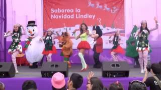 Animadoras de fiestas infantiles, animación para fiestas infantiles en Lima Perú