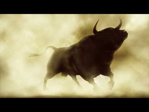 Stock Market Bull 2019 Follow The Trend and Avoid The Noise
