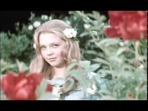 Волшебный цветок - Пока бьют часы