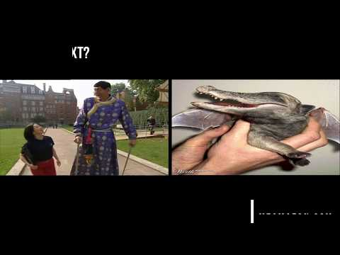 World's Largest Varicose Veins, Tallest Man or Bizarre Creature 👍😜😍👍