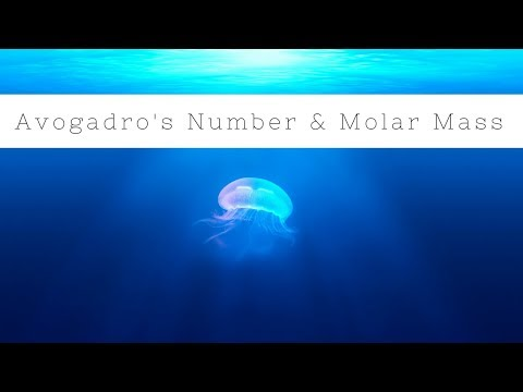 Avogadro's number & molar mass practice problems