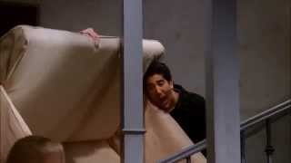 Friends - Ross Pivot