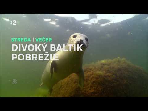 Divoký Baltik - Pobrežie
