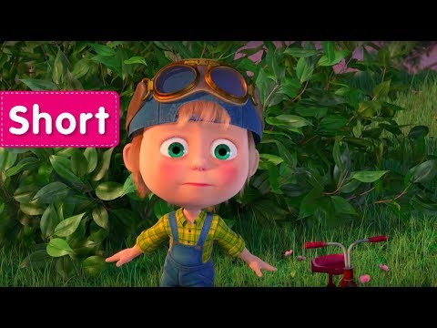 Masha and The Bear -  Driving Lessons 🚘 (Take a ride!)