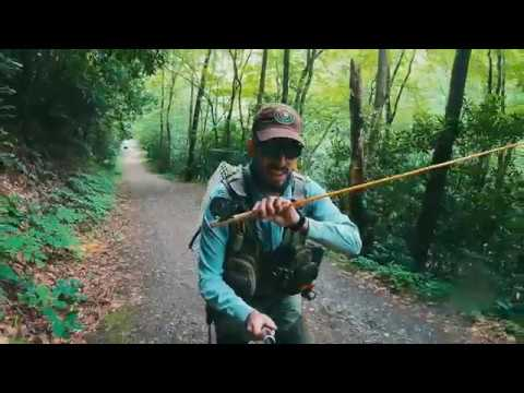 Bradley Fork Fly Fishing In Great Smoky Mountains National Park