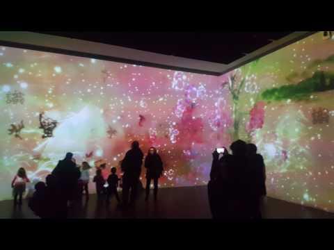 Interactive Art Derby Quad