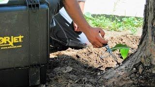 видео Инъекции от вредителей сада