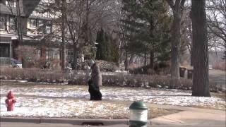 Daisy (giant Schnauzer) Boot Camp Trained Dog Video