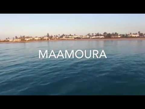 Maamoura 2016