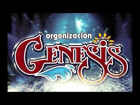 ORGANIZACION GENESIS - SAN LUIS POTOSI