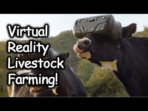 Livestock Farming W/ Virtual Reality and Treadmill - Matrix for Animals