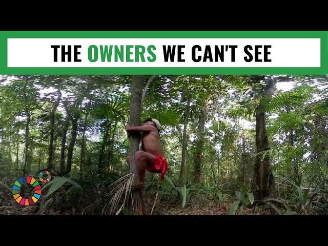Moma'e jarã kõ jikuwaê'ã kõ (The Owners We Can't See) - MY WORLD 360
