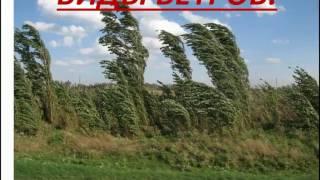 видео Виды ветров