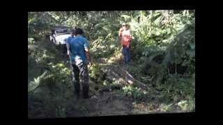 Trilha Rio do Meio Matinhos PR 5 Willys e 1 Vitara