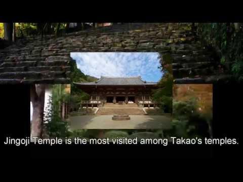 Japan Trip: Jingoji