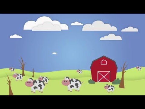 Animal Agricultures Impact on Climate Change