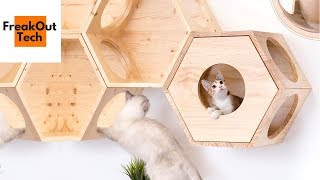5 Incredible Inventions For Your Cat