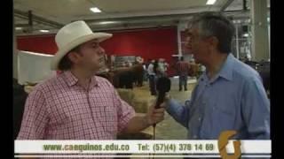 CAEQUINOS, habla de la tipificación racial bovina