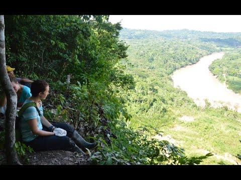 Volunteering Abroad in the Amazon Jungle