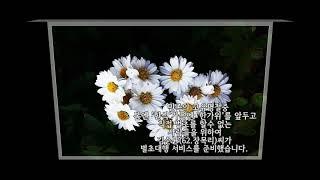 벌초 대행 - 김순균