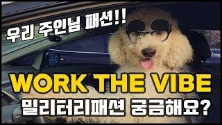 WORK THE VIBE : 밀리터리 패션, Military fashion vintage style  개와 사랑에 빠진 사나이 ft.경욱