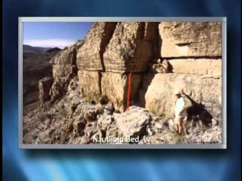 Origins - The Worldwide Flood - Geological Evidences - Part 1