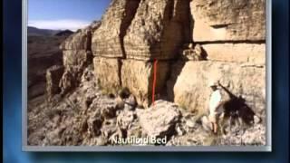 Origins: The Worldwide Flood, Geological Evidences (Part 1)