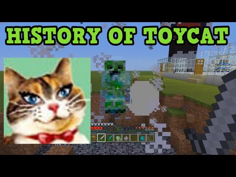 500k Special - History Of Toycat