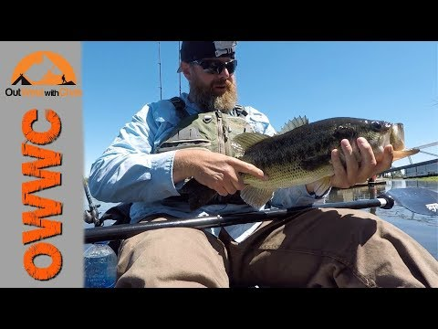 Looking For A Bite - Frank's Tract Kayak Fishing