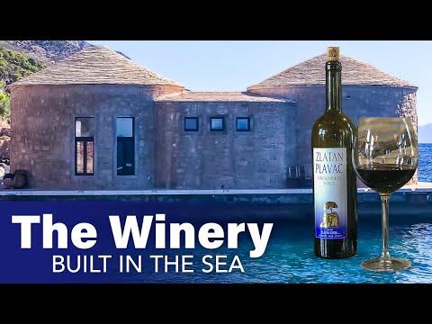 The Winery Built Underwater 🍷 Zlatan Otok (Underwater Winery, Croatia)