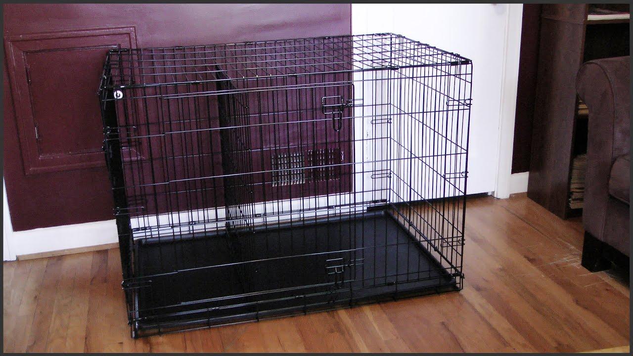 Dog Crate Setup Youtube